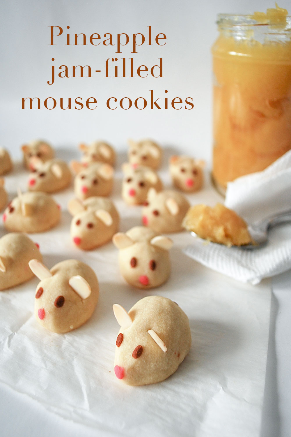 kitchen-whiskers-mouse-cookies-pinteres